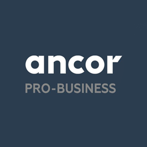 ANCOR PRO-BUSINESS: HR-тренды 2021